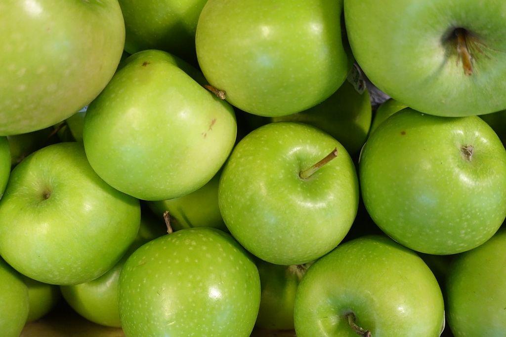 foglie melo