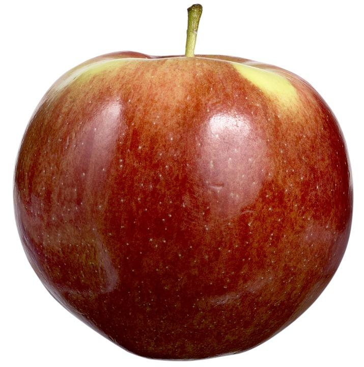 coltivazione mele