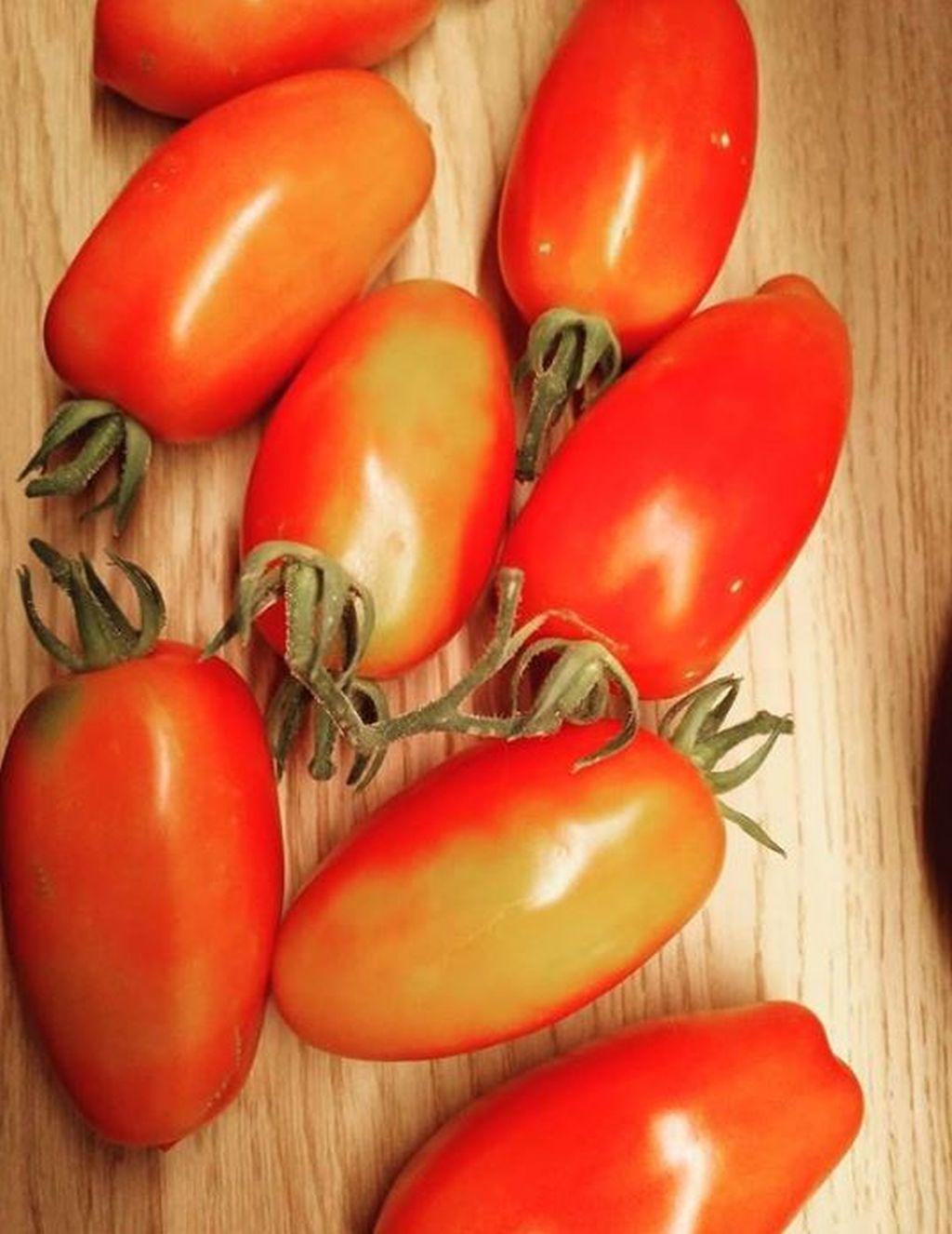 san marzano pomodori